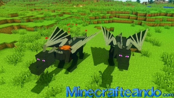 Dragon-Mounts-Mod-3