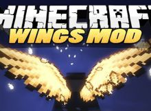cosmetic-wings-mod