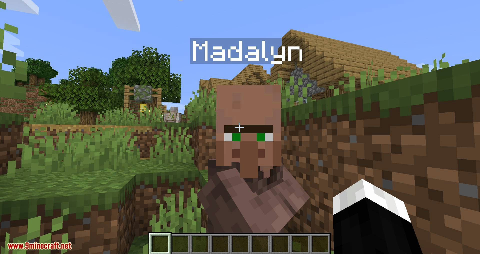 Mod de nombres de aldeanos para minecraft 02
