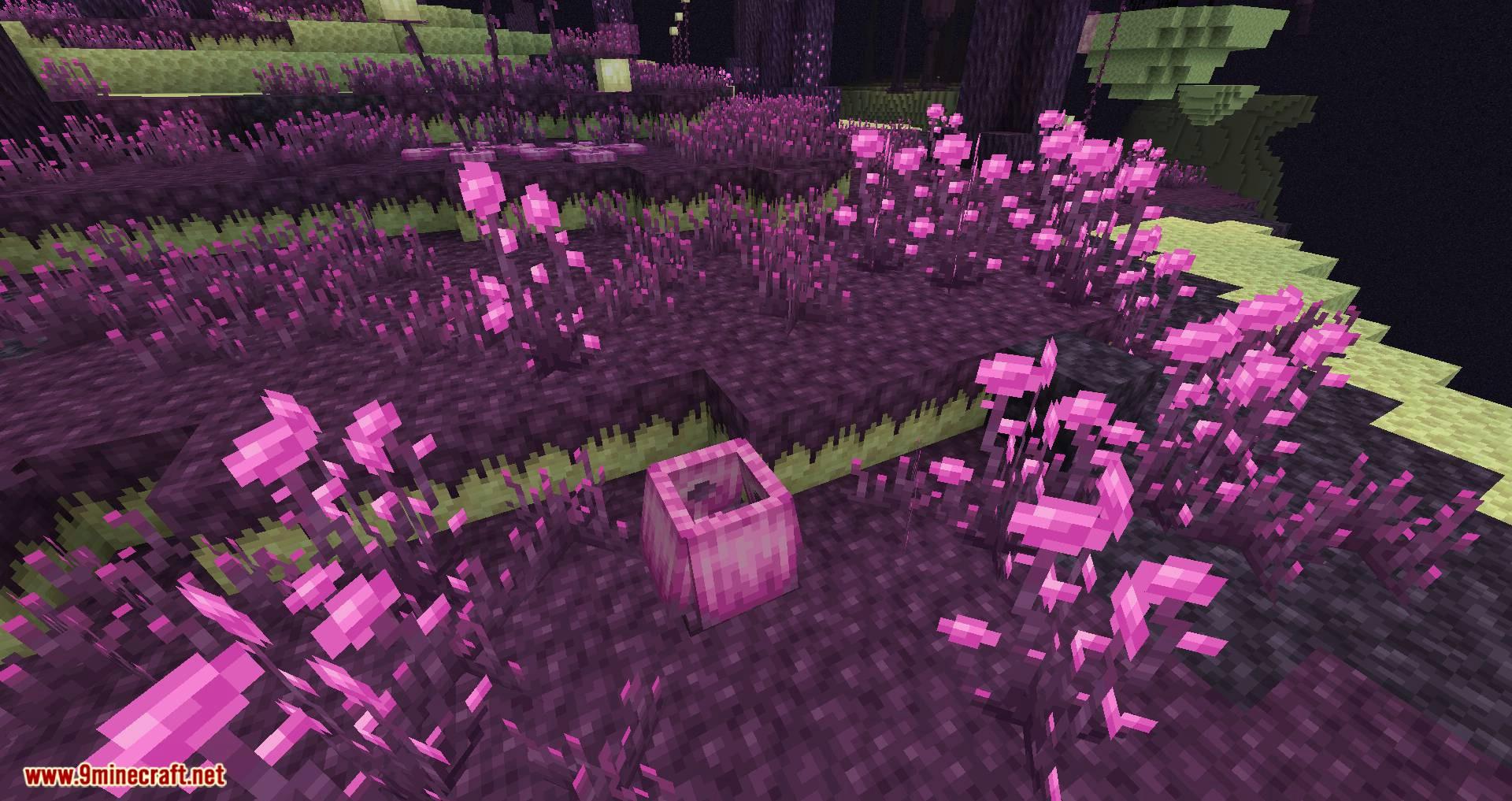El mod de expansión endergetic para minecraft 03